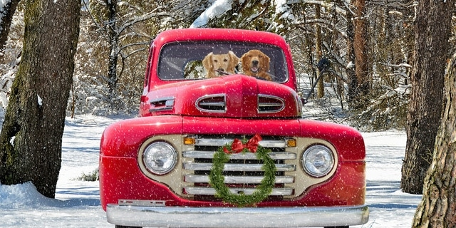 Christmas-Truck-Dogs-640x320
